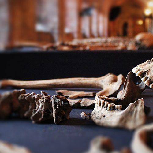 Return of The Black Death: Secret History